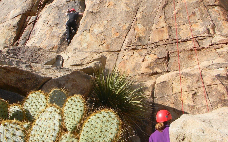 Two teens climbing rocks in Joshua Tree
